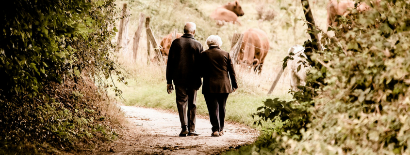 hip replacement pensioners walking